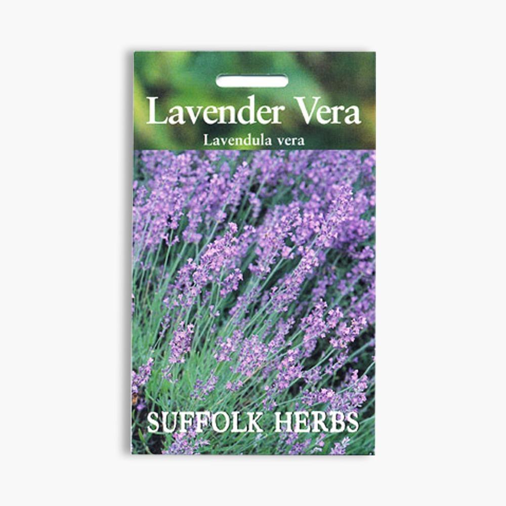 Garden Bush: Jersey Lavender Farm